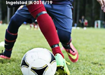 INgelstad-IK-profilguide-1-1
